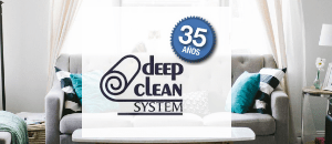 Deep Clean System