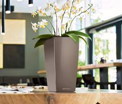 Maxi Cubi Table Planter Espresso Metallic en internet