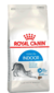 ROYAL CANIN GATOS INDOOR 27