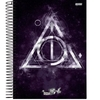 Caderno escolar Harry Potter universitário de 10 matérias na internet