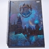 Caderno escolar Harry Potter 1 matéria