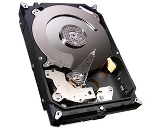 HD Interno Seagate 1TB SATA 600MB/s 7200rpm 64MB 3,5 HD Interno (ST1000DM003)