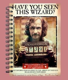 Anillado Have you seen this wizard? - comprar online