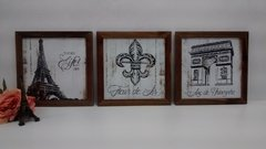 Conjunto Trio Quadros Decorativos Flor de Lis Paris na internet