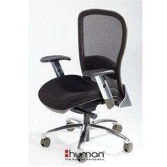 Sillon Ejecutivo Emesh en internet