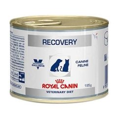 Recovery Royal Canin